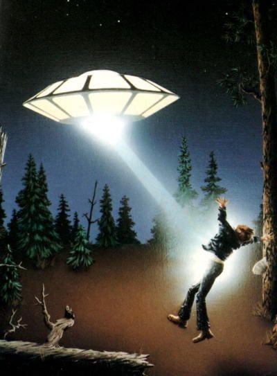 1975年11月5日午後6時ごろ,アリゾナ州の国有林の中で,伐採作業をしていた一人トラビス・ウォルトンがUFOにアブダクト