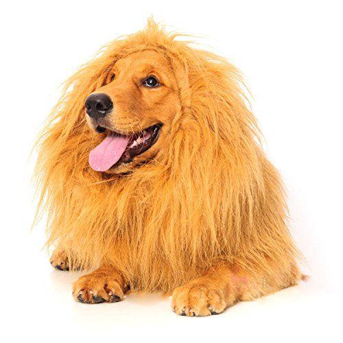 High Maintenance Dog Lion Mane for Dog, Dogloveit Dog Costume with Gift [Lion Tail] Lion Wi