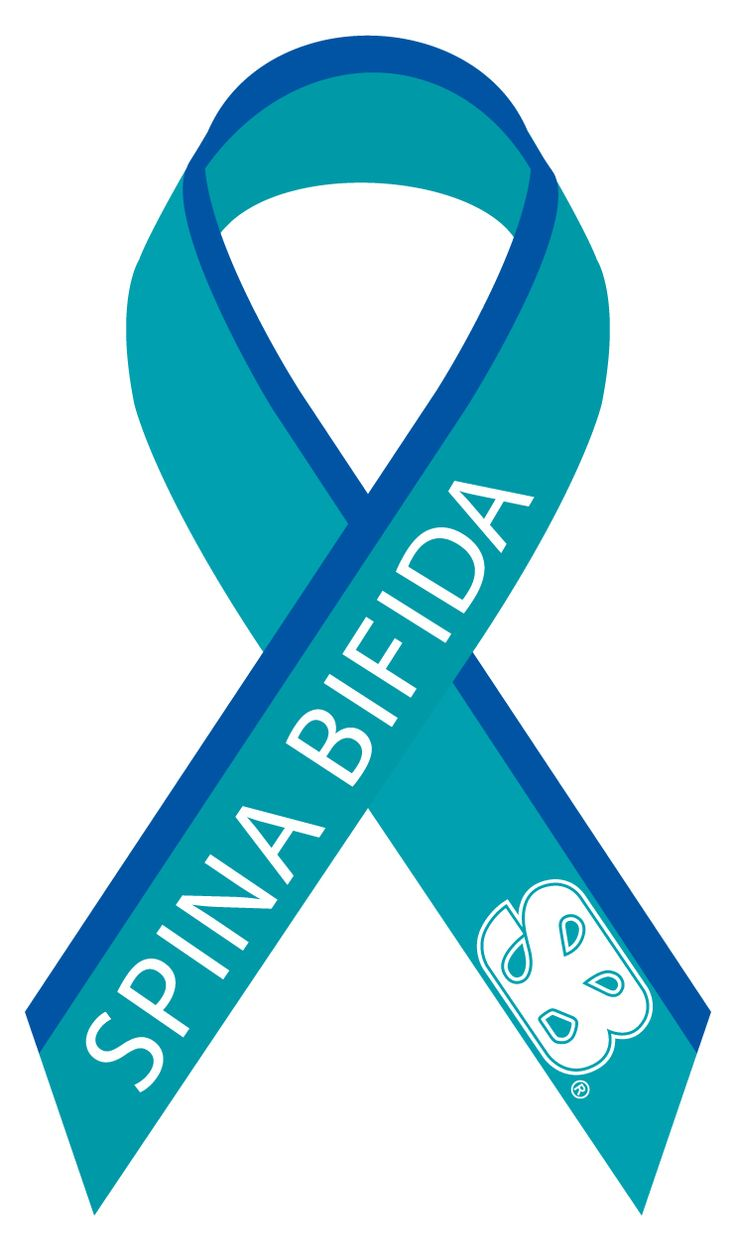 Spina Bifida Support Ribbon - Wiring Diagrams •