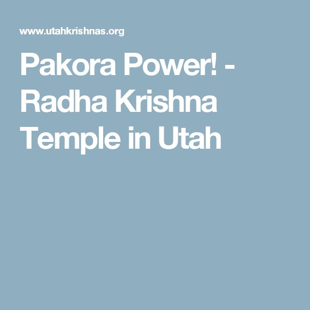 Pakora Power! - Radha Krishna Temple in Utah