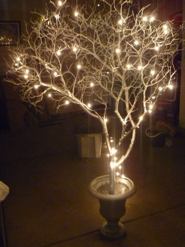 Lights and tree branches… would be a good look for either a FALL festival…. or a January Hot Cocoa party…. or as simple cheap…. winter wedding table decor