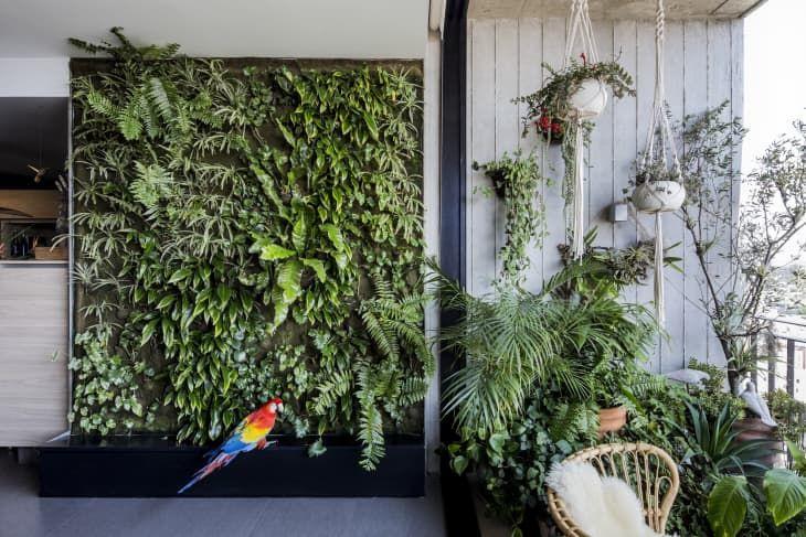 The Best Indoor Garden Ideas For Bringing The Great Outdoors Inside Indoor Garden Indoor Tree Colorful Plants