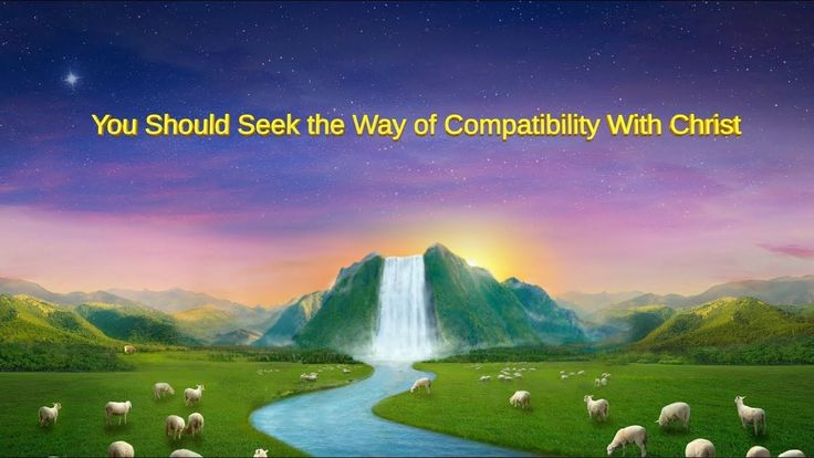 "Almighty God's Word ""You Should Seek the Way of Compatibility With Christ"""