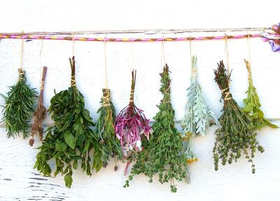 Midsummer Herb Gathering ~ Part 2 | Crafty's Cuppa Coffee