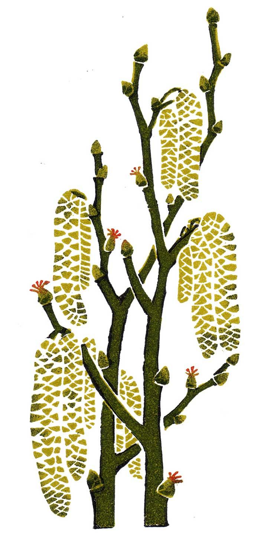 clare melinsky, linocut, print, ink, hand printed, heritage, publishing, penguin, bloomsbury, traditional, illustration, illustrator, characters, scenery, landscape, animals, nature, wildlife