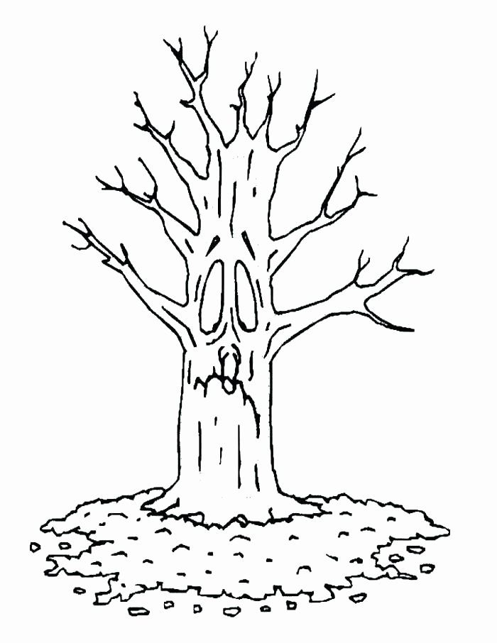 Tree Trunk Coloring Page Inspirational Jungle Tree Coloring Page At Getcolorings Tree Coloring Page Leaf Coloring Page Coloring Pages
