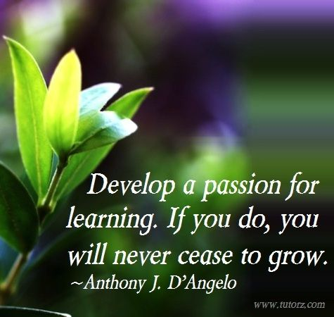 """""""Develop a passion for learning. If you do, you will never cease to grow."""" ~Anthony J. D'Angelo"""