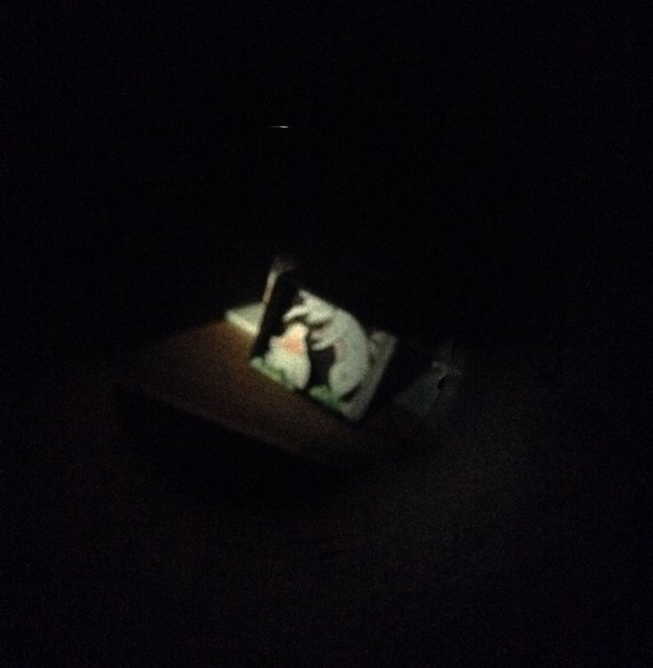 Camera Obscura. 2016. Kim.