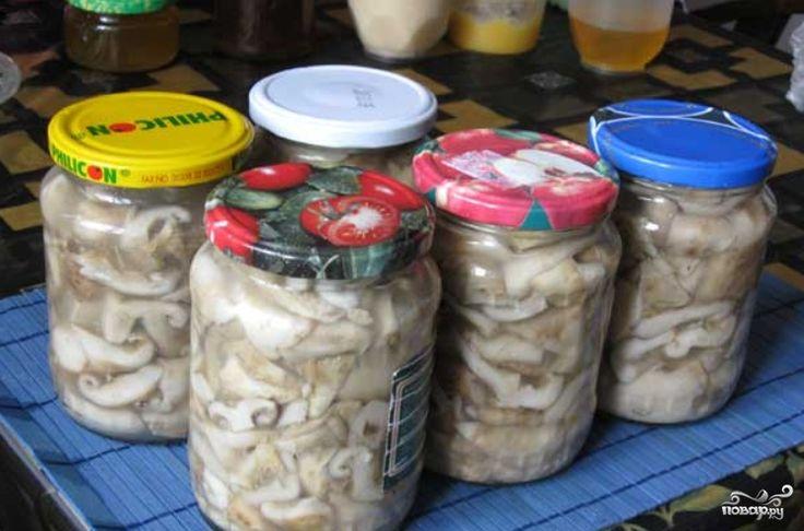 Рецепт правильной засолки грибов мне поведал один опытный грибник со стажем…
