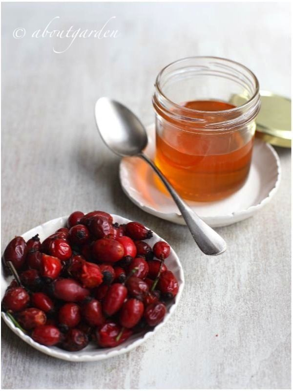 Rose hips + honey - A sweet vitamin C remedy!