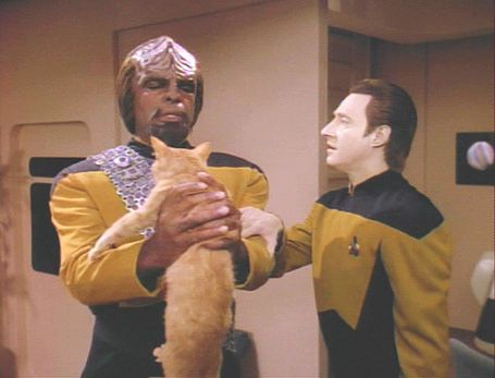 Point/Counterpoint – The better sci-fi/fantasy pet? Spot from Star Trek: TNG, or Oy from Stephen King's Dark Tower