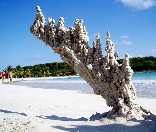 "When Lightning Strikes Sand. Fulgurites (Latin, meaning ""thunderbolt"") Sometimes referred to as petrified lightning, they are natural hollow glass tubes formed by lightning strikes in quartzose sand, silica, or soil. (Wikipedpia)"