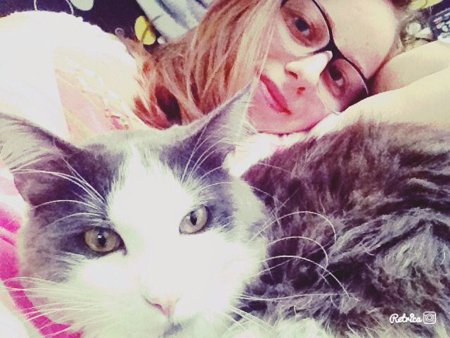 #cats #catlove