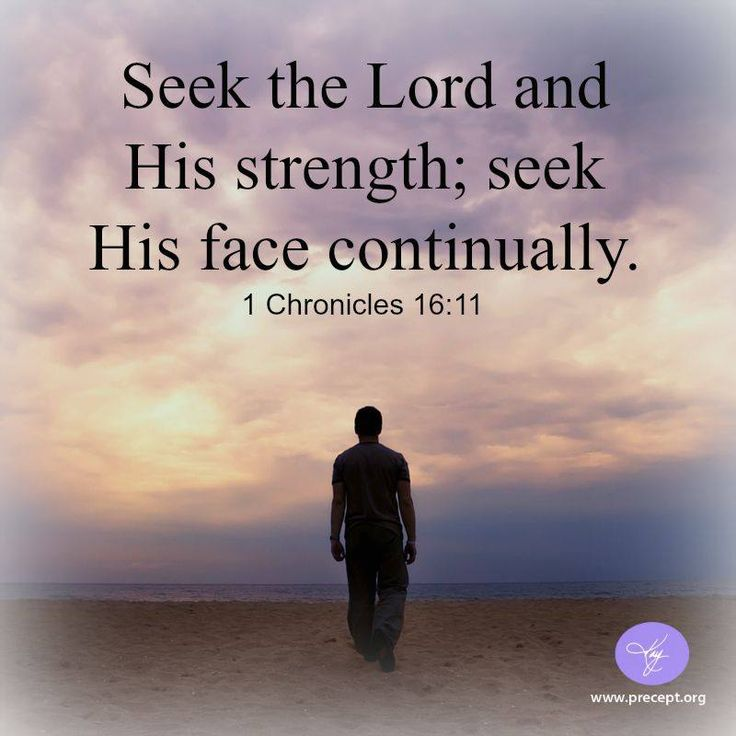 1 Chronicles 16:11   - Seek the Lord and His strength; seek His face continually.