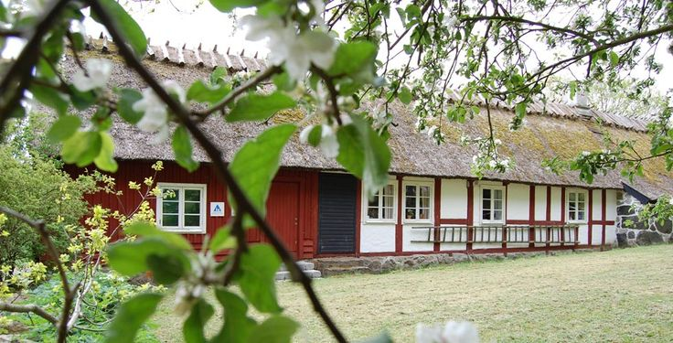 STF - STF Hostel Haväng - hostel
