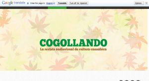 Cogollando.com