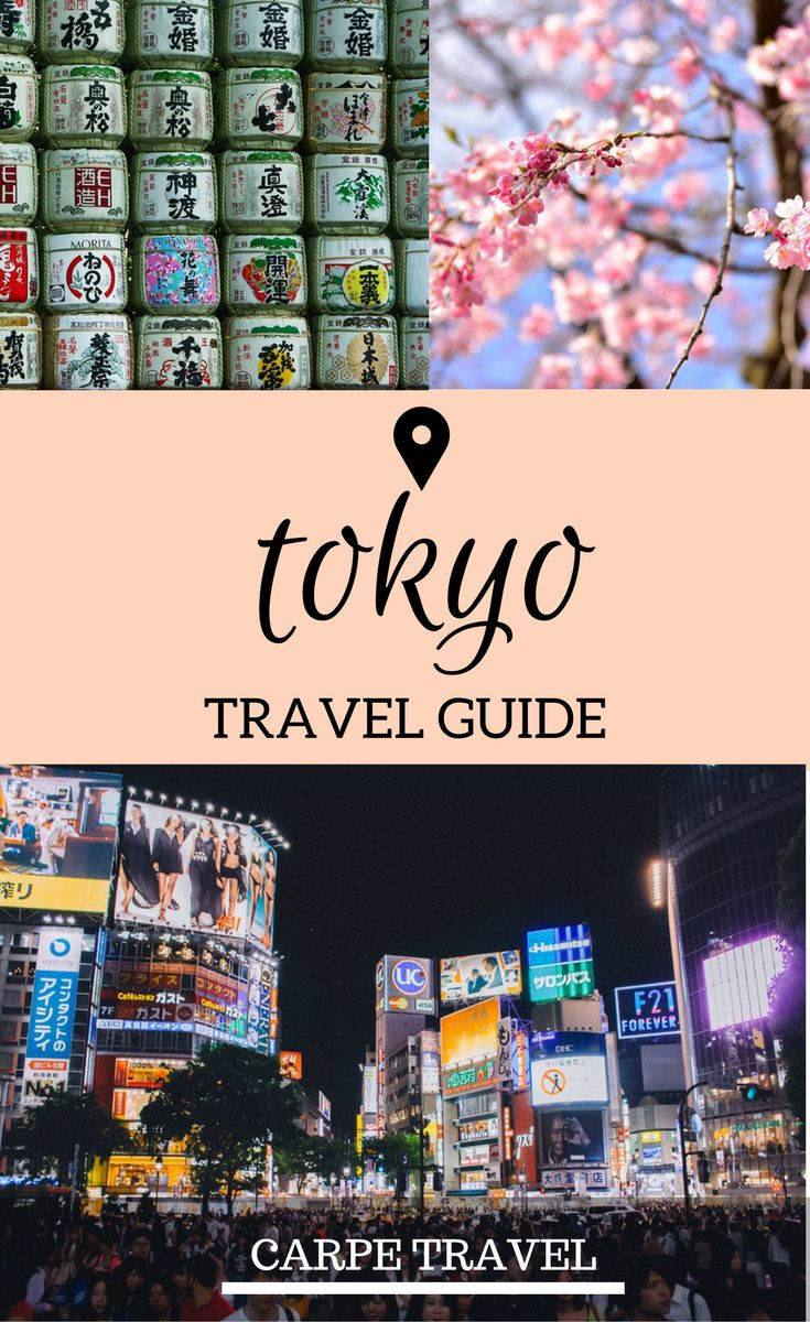 Traveling to Tokyo for the first time? Read on for the 8 things every first-timer in Tokyo should know before jetting off to this amazing city. | Tokyo travel guide | Tokyo Japan | Tokyo travel tips | Tokyo for first timers - via @elainschoch