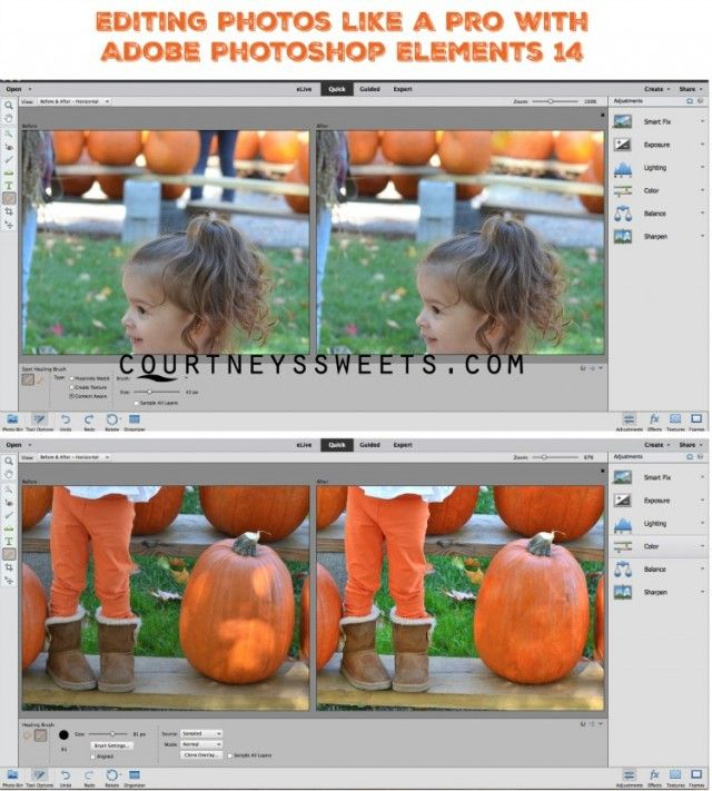 adobe photoshop elements vs pro