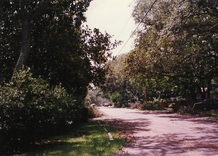 Hurricane Opal aftermath.