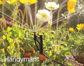 how to install a micro irrigation system in your yard...step-by-step tutorial with tools and materials list...can be installed almost anywhere without digging or special tools
