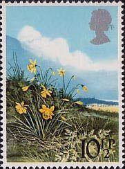 British Flowers 10.5p Stamp (1979) Daffodil