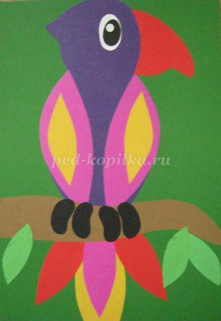 Аппликация из цветной бумаги своими руками для детей 6-7 лет. Шаблоны. Попугай