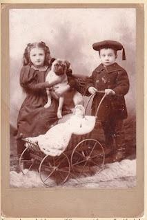 Vintage Pug Photo