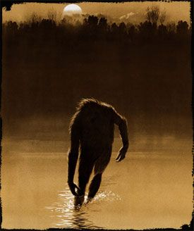 Fouke Monster: The Beast and the Legend of Boggy Creek. I have to admit that I about half believe in these--Bigfoot, sasquatch, skunk ape. Too many reports over hundreds of years.
