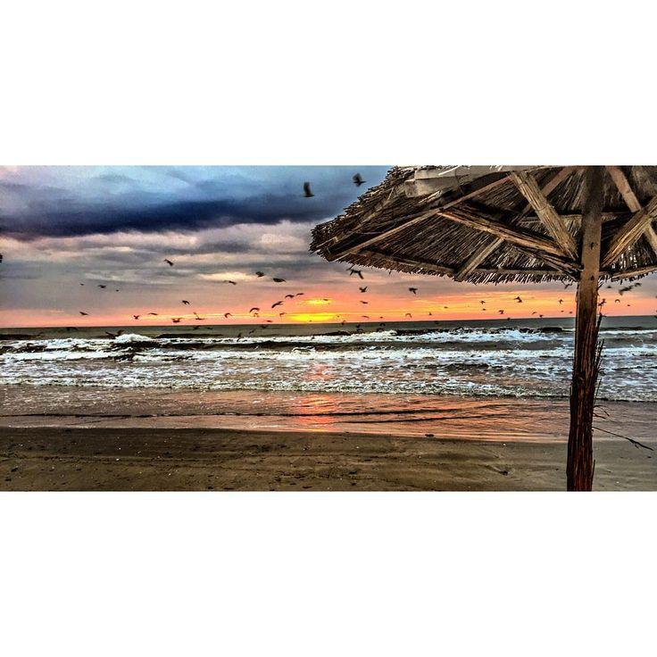 crazy beach : i just wanna fly away…  #crazybeach (at crazy...