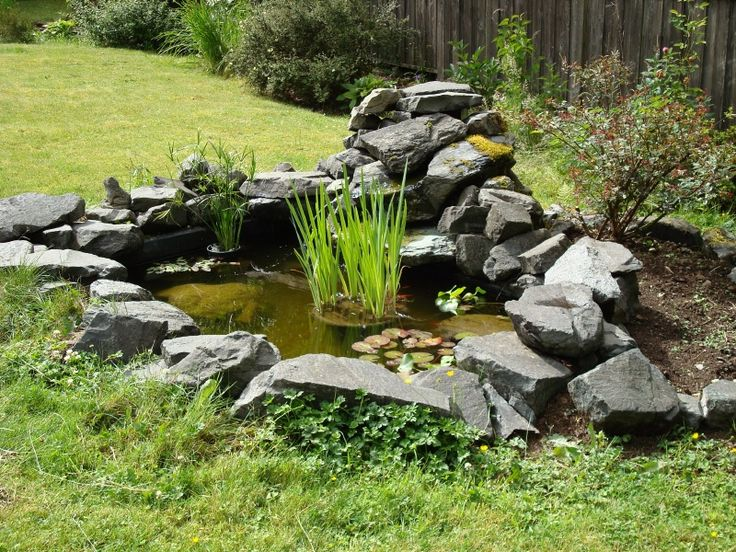 64 best fish ponds images on pinterest backyard ideas for Fish pond features
