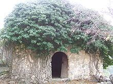 Herba-savina - Viquipèdia, l'enciclopèdia lliure #pallarsjussa #despoblats #pueblosabandonados