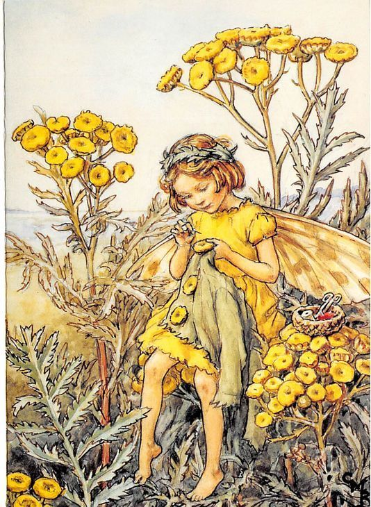Flower Fairy Greeting Card - Cicely Mary Barker - Tansy Fairy - Get Well #WarnePresentSales #Greeting