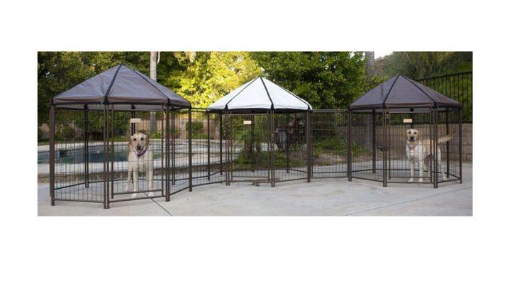 Dog Enclosures Outdoor