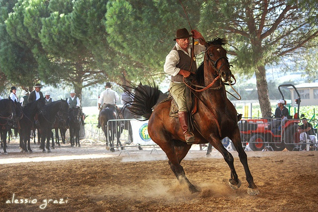 A great day out for kids too in Tuscany: go watch the Butteri in action. Maremma's cowboys whose tradition goes back centuries.