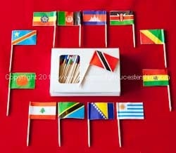 eurovision flags 2013