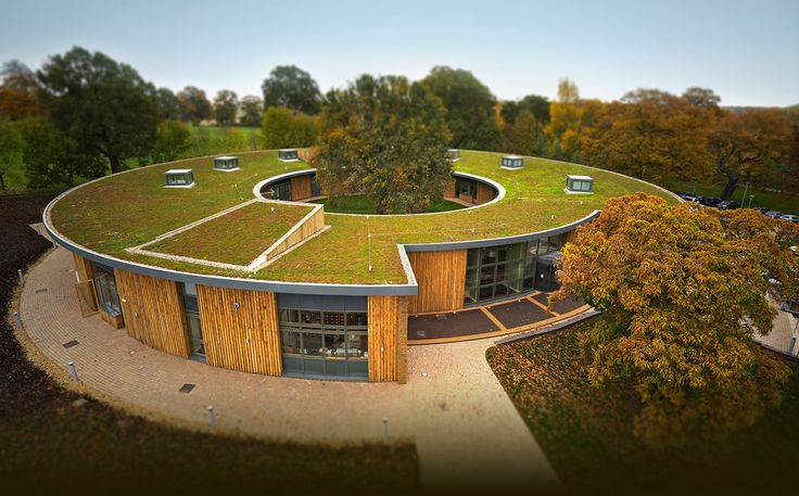 Specialists in Green Roofs, Grass Roofs and Eco Roofs   Sky Garden