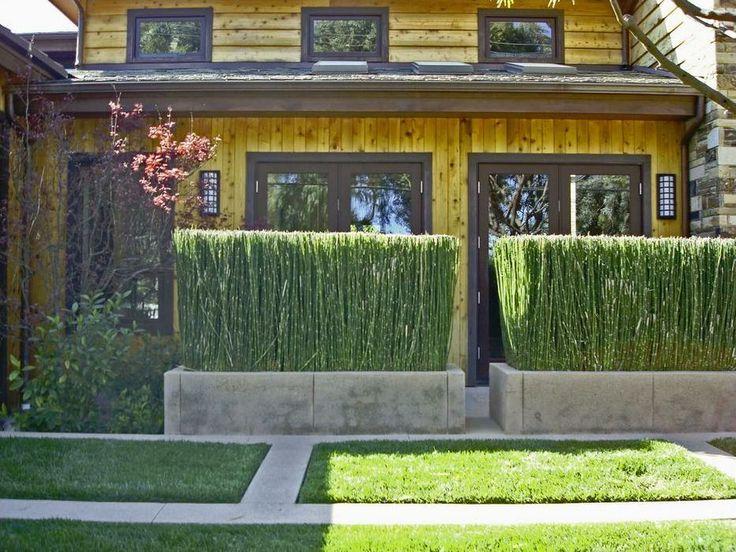 21 best Sensory Garden Ideas images on Pinterest | Garden ideas ...