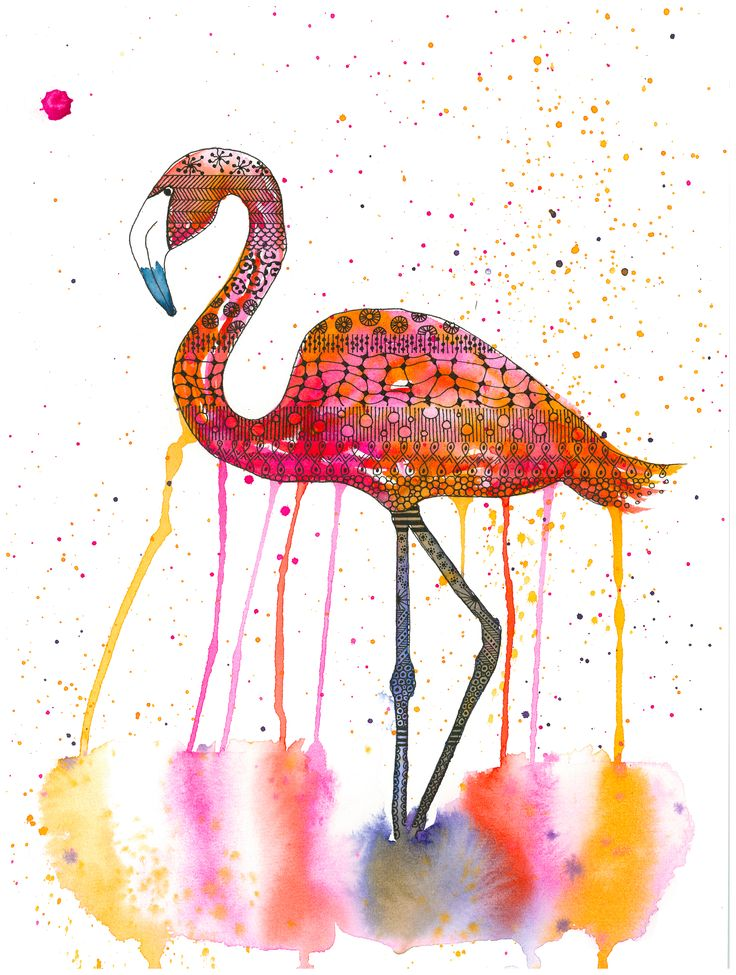 Flamingo - Wine & Untangle