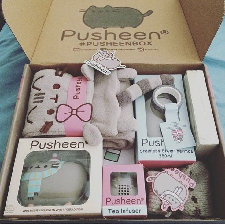 I would so want to get a pusheen box, there so awesome!