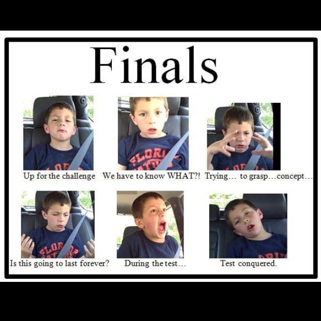 FinalsColleges Life, Laugh, Real Life, Funny, So True, Pa Schools, Things, Final Weeks, True Stories