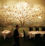 Lucky Bean Tree Restaurant, melville restaurant, melville johannesburg restaurant, restaurants melville johannesburg cbd, eating out melville johannesburg