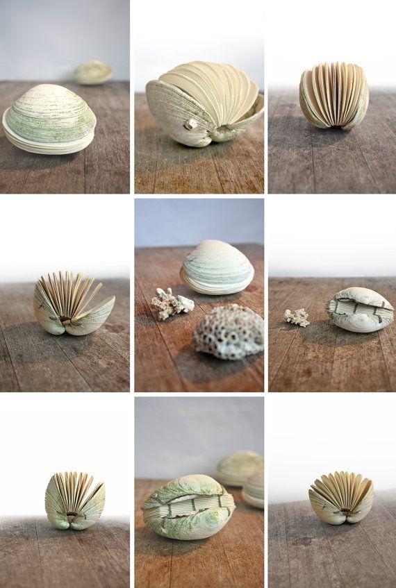 Libro de la revista mar libro de Clam Shell Shell mano por Odelae