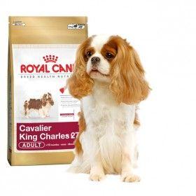 Alimentoa medida para perros de la razaCavalier King Charles de más de 10 meses. #perros #dogs #royalcanin #maskokotas