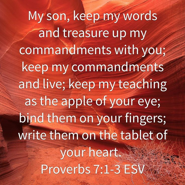 My son, keep my words and treasure up my commandments with you; keep my commandments and live; keep my teaching as the apple of your eye; bind them on your fingers; write them on the tablet of your heart. Proverbs 7:1-3 ESV http://bible.com/59/pro.7.1-3.ESV