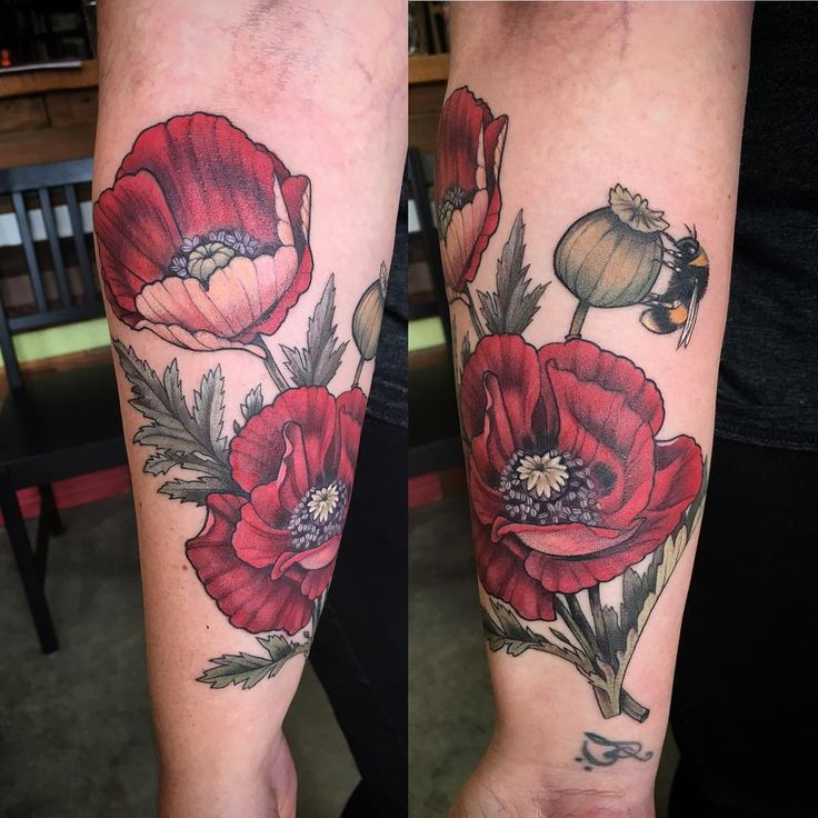poppies,botanical tattoo, bumblebee by Alice Kendall