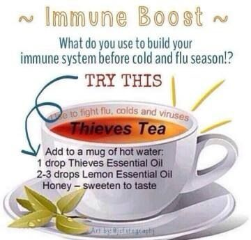 Young living cold buster tea