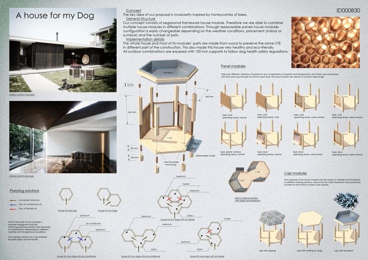 // a house for my dog // 1st PLACE - Team: Anatolii Kotov, Terentii Zhuravlev  City: St. Petersburg  Country: Russian Federation