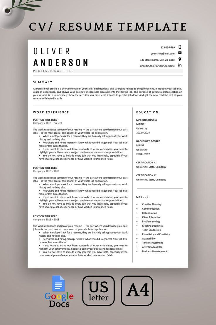 Google Docs Resume Template Professional 1 2 Page resume