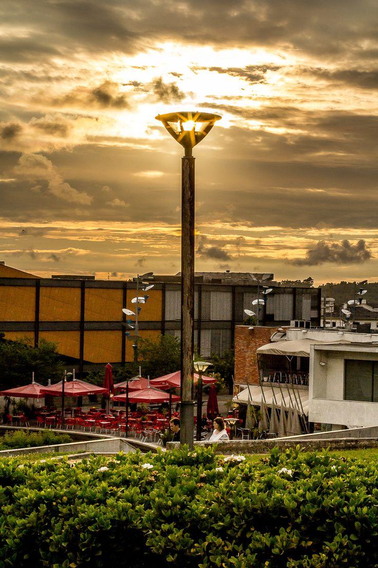 Light - Por do Sol no Parque Urbano de Ermesinde