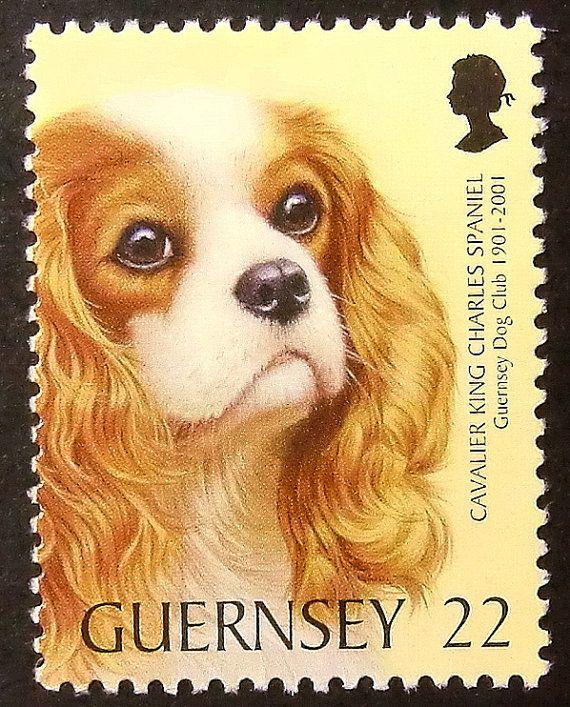 cavalier king charles spaniel postage stamp. Guernsey.